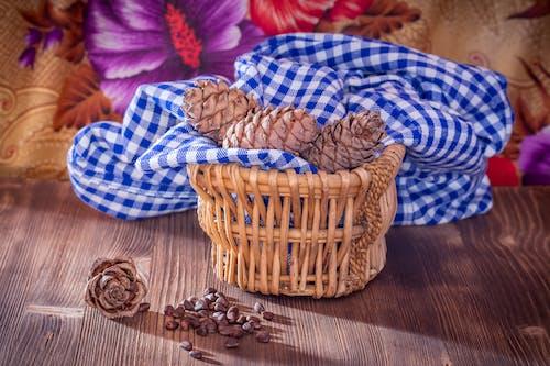 소나무 견과류, 음식, 정물, 짠 바구니의 무료 스톡 사진