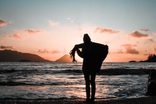 Gratis stockfoto met achtergrondlicht, afgetekend, avond, dageraad