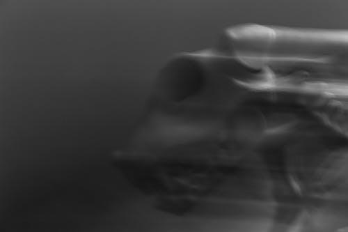 Základová fotografie zdarma na téma abstraktní, černobílá, kostra, rozostření