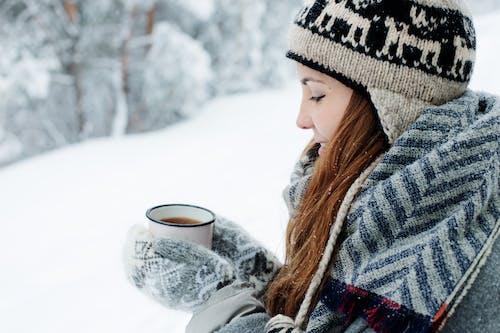 Gratis stockfoto met besneeuwd, bevriezen, bevroren, blij