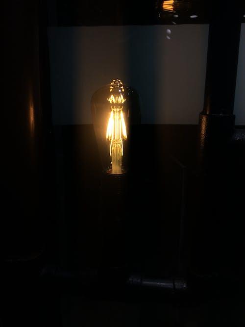 Photos gratuites de ampoule, ampoule à filaments, ampoules, delhi