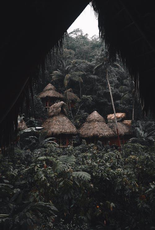 Безкоштовне стокове фото на тему «Будинки, власність, гори, Денне світло»