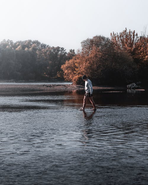 adam, ağaçlar, boş zaman, göl içeren Ücretsiz stok fotoğraf