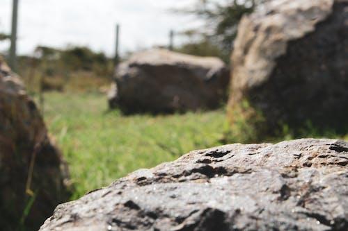 Gratis lagerfoto af sten