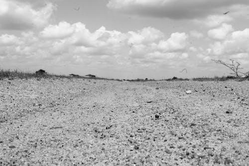 Gratis lagerfoto af tørt land