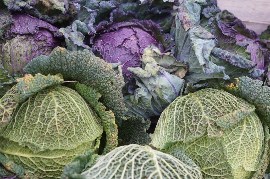 Green and Purple Leaf Vegetable