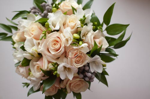 Flower bouquet with roses and green plants on white background