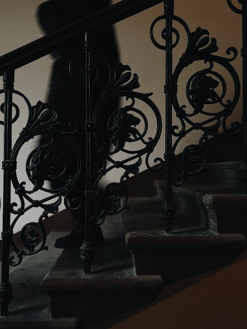Free stock photo of lions, shadow, stairs