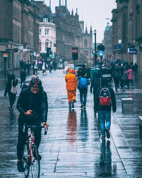 감기, 거리 사진, 물, 블루의 무료 스톡 사진