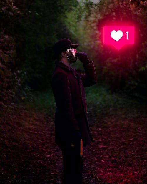 Ảnh lưu trữ miễn phí về ánh sáng, áo khoác ngoài, ban đêm, cây