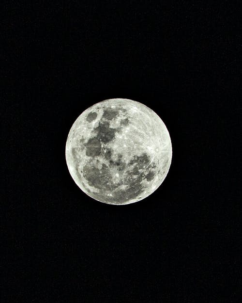 White and Gray Fullmoon