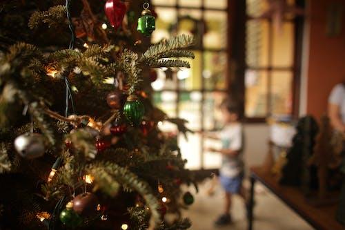 Foto d'estoc gratuïta de arbre, arbre de Nadal, boles de nadal, celebració