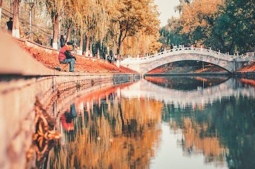 Ingyenes stockfotó csatorna, Férfi, folyó, híd témában