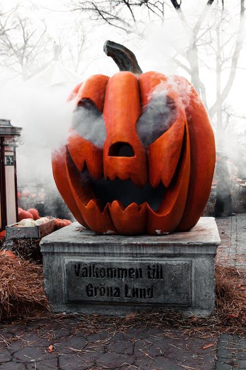 Imagine de stoc gratuită din dovleac de Halloween, fân, fum, Halloween
