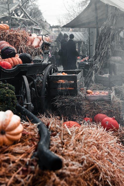 halloween, hay, market place