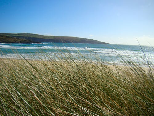 Free stock photo of beach, grass, ireland, sand
