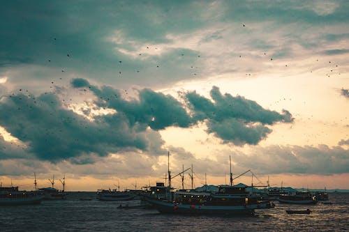 Foto d'estoc gratuïta de aventura, bat, capvespre, mar