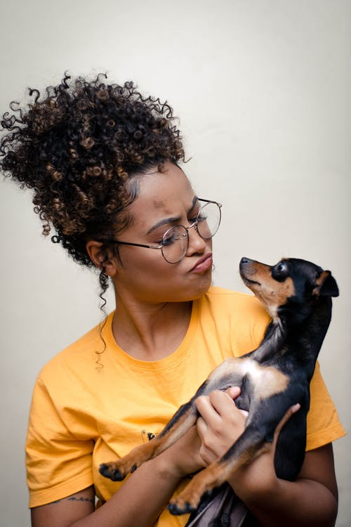 Woman Holding Short-coated Black and Brown Puppy