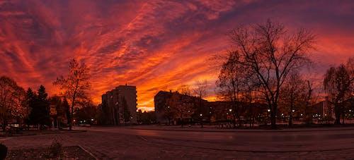 Бесплатное стоковое фото с восход, красное небо