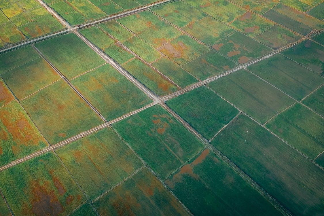 Аэрофотоснимок пахотных земель