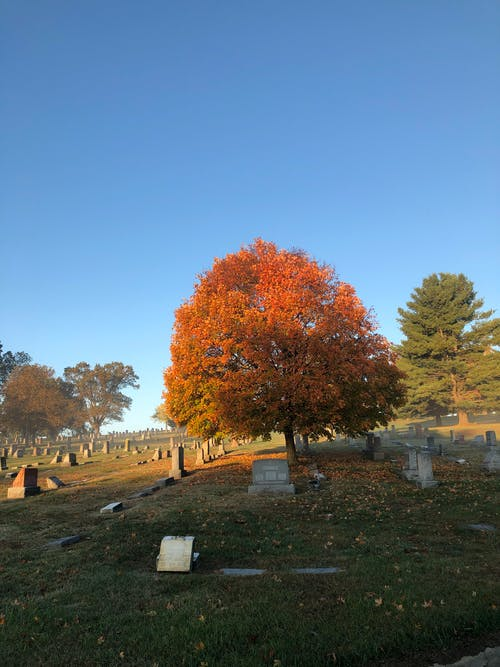 Free stock photo of autumn, cemetery, cincinnati, fall