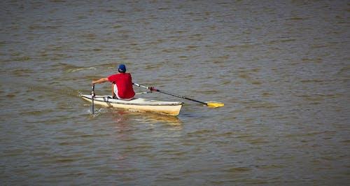 노 젓는 배의 무료 스톡 사진