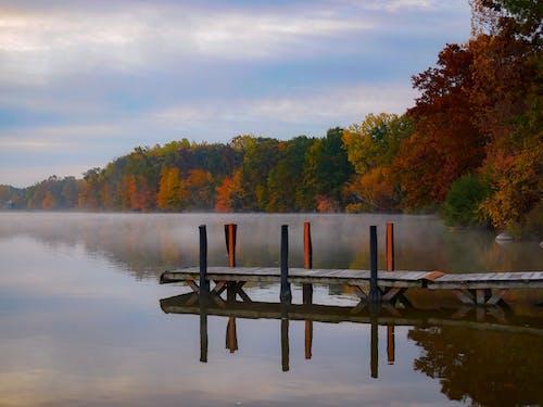Free stock photo of autumn, autumn color, dock, fall