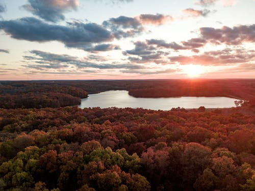Ilmainen kuvapankkikuva tunnisteilla järvi, matkustaa, putoaminen, puut