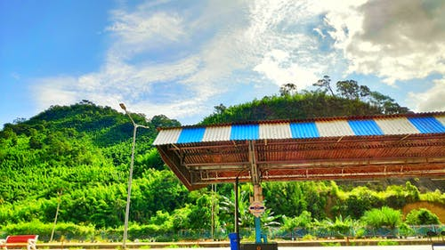 Free stock photo of assam, hill station, india