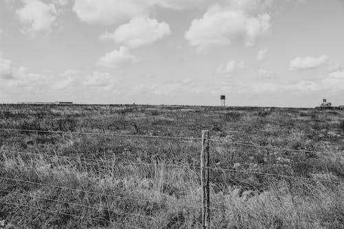 Gratis lagerfoto af gård, landskab, sort/hvid fotografi