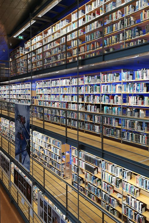 Free stock photo of library