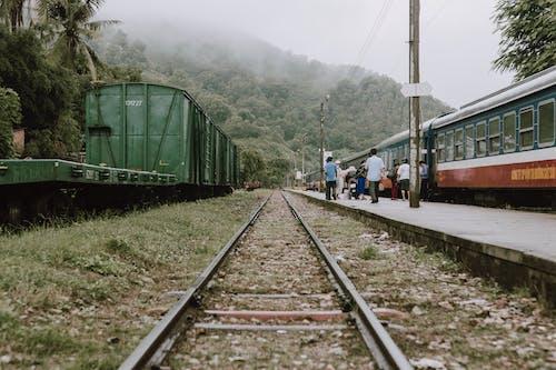 Foto d'estoc gratuïta de acer, andana, andana de tren, arbres