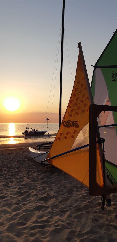 Foto profissional grátis de litoral, prancha de surfe, windsurf