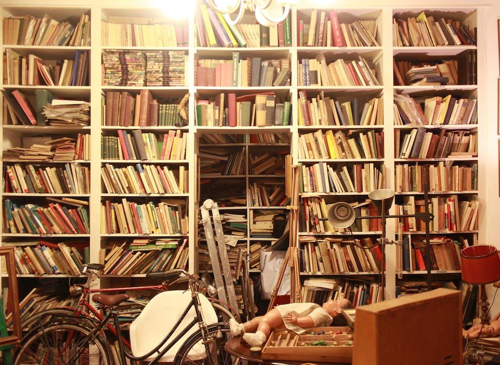 bike, book, culture