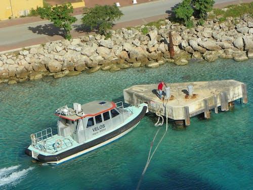 Free stock photo of tugboat