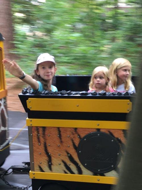 Free stock photo of kids, train ride