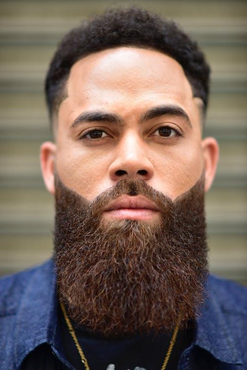 Immagine gratuita di barba, uomo barbuto