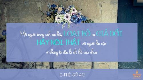 Foto profissional grátis de Bíblia, bonito, citações, cor