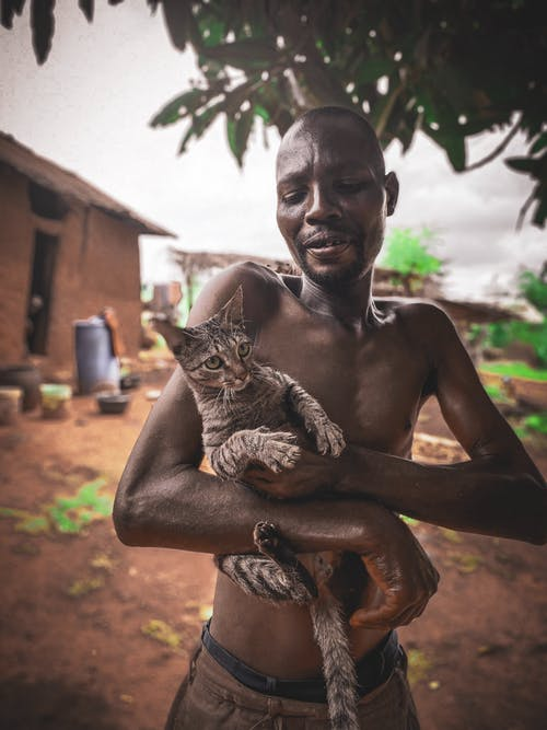 คลังภาพถ่ายฟรี ของ การถือ, การยืน, คนรักสัตว์, จับ