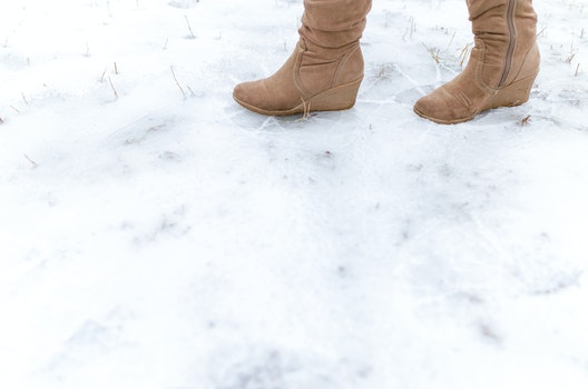 Free stock photo of cold, snow, nature, fashion