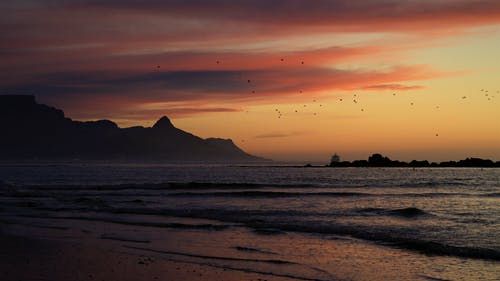 Free stock photo of big bay, Cape Town, Lions Head, sunset