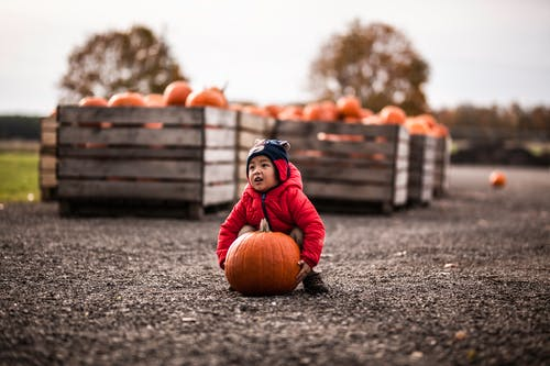 Selective Focus Photography of Boy Carrying Orange Pumpkin