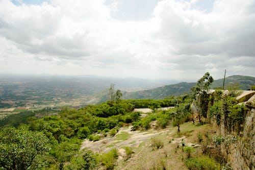 Gratis lagerfoto af bakker, chikmaglur, grøn, Indien