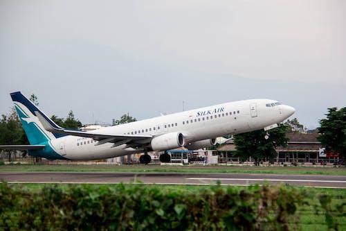 Free stock photo of airplane, airport, plane
