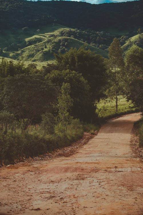 Low Angle Shot Of An Unpaved Road Surrounded By Green Trees And Mountains