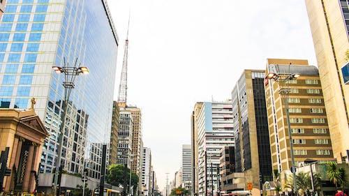 Free stock photo of avenida paulista
