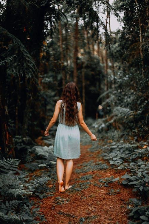 Woman in Blue Dress Walking Inside Forest