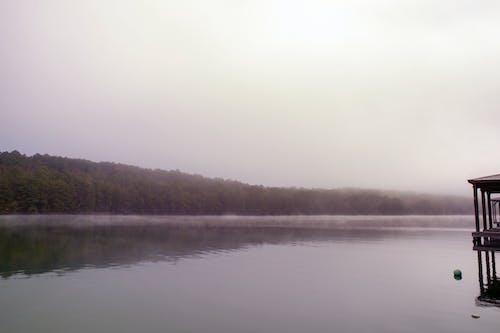 Ảnh lưu trữ miễn phí về bình yên, buổi sáng, buồn rầu, có sương mù