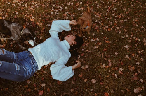 Woman Lying on the Grass Field