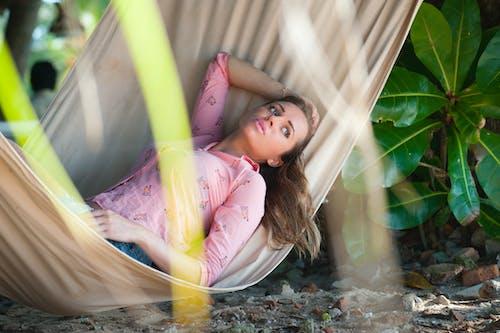 Gratis lagerfoto af afslapning, close-up, dagslys, fokus